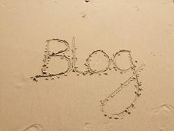 Blog BierzoSEO